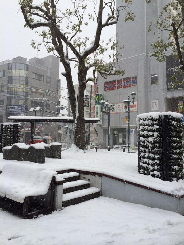 1時間ほど前の行徳駅前の雪です。 これは積雪量10cmコースだね。 #gyotoku http://t.co/GkhykpA4S8