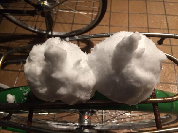 リンちゃんと雪だるま2つつくった。上の玉がちっちゃくなりすぎちゃった http://t.co/CcK1nRwUWj
