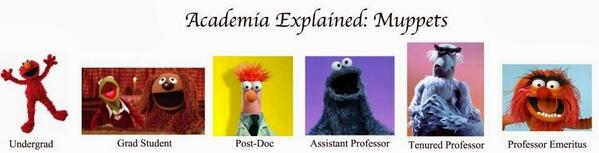 Academia explained in Muppets RT @profdgd http://t.co/wQTe5QgiPR