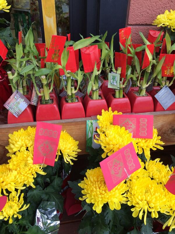 According to the Chinese these yellow flowers are good for dead ppl they are being sold as gifts for friends :) http://t.co/vCmwPBlj6h