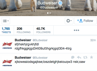 This just in, Budweiser's social media manager has been replaced by a cat: (h/t @MichaelToole ) http://t.co/BxVRPPhgZQ
