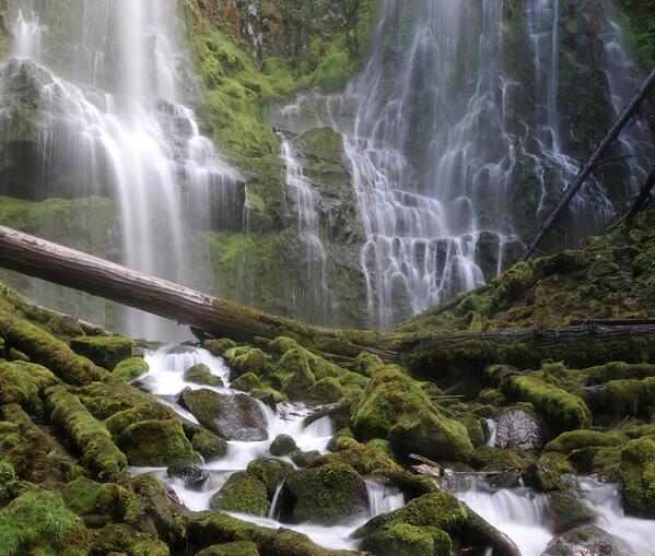 In Oregon, we recommend that you do go chasing waterfalls. http://t.co/hYTGd9yidD