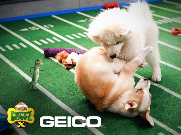 Brilliant tackle, Brody! You're going to be one to look out for on game day! #PuppyBowl http://t.co/L0l0M7nBcG
