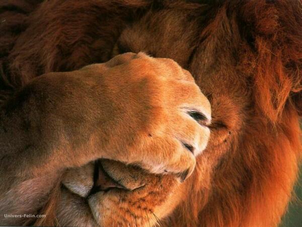 'Doh!' #humour http://t.co/wrQhjDcsGK