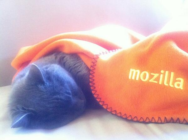 This kitty can sleep soundly knowing that Mozilla, the maker of Firefox, will keep him safe and secure online. http://t.co/QGthCAXKLR