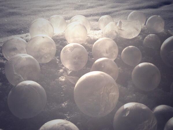 【松本情報】 RT @7tukiyo: 今朝の楽しみはこれ!凍るシャボン玉。今朝はマイナス3度程度だったようですが、ちゃんと凍ります。シャボン玉液は割れにくい配合にしています。  http://t.co/0lJTAPbNtH