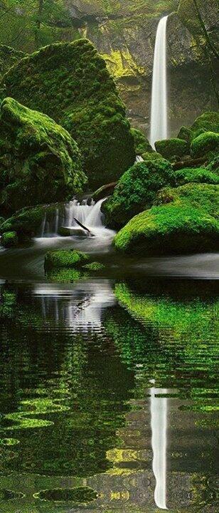 شلال Elowah ، ولاية أوريغون - Elowah Falls, Oregon. #معلومات_سياحية http://t.co/KqDvURr5Ch
