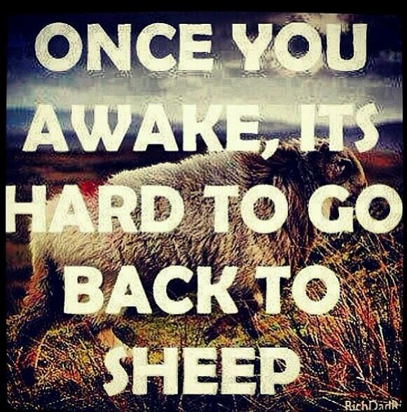 Nick McCay (@NMcCay): #Investigate911 #Awake #Sheeple http://t.co/wb3oBNyNOG