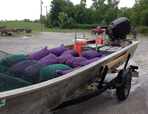Boat load of wild-caught Atchafalya Basin #crawfish!! http://t.co/x02ChTQ2sX