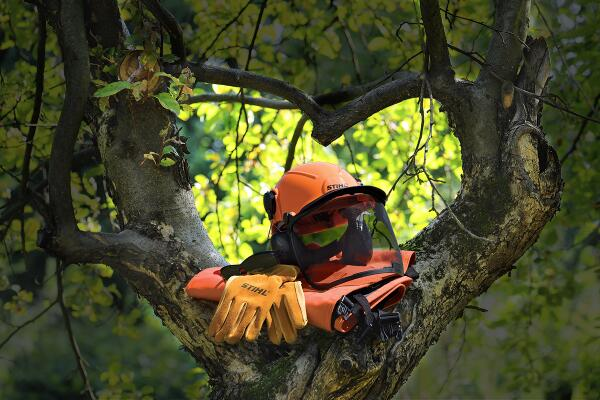 Protect the one you love this Valentine's Day. RT 4 a chance 2 win a STIHL prize thru 3pm est | U.S. only #giveaway http://t.co/XOyzXgXcU1