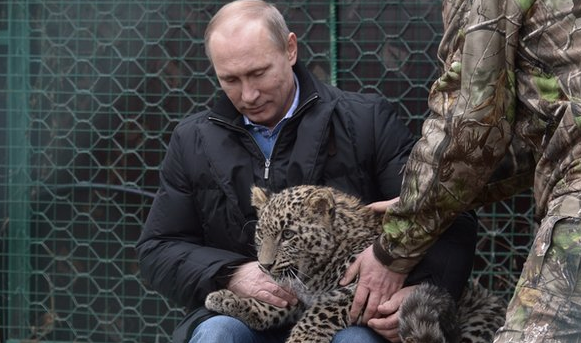 #Putin calms leopard cub that had attacked two journalists, #Russia media says. http://t.co/fb17HK4kFz http://t.co/vhT0y0vaVg