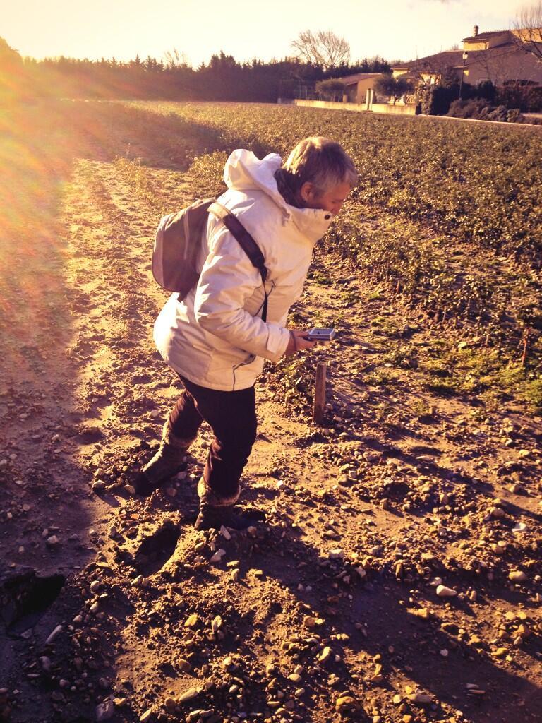 @AdrienJoveneau Découverte des #truffières avec la MamyReporter #francodyssée @ladrometourisme Samedi @vivacite 15h ! http://t.co/LUbl7VNm42