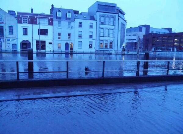 Dublin gets Garth Brooks, Cork gets Seal. http://t.co/bcB8Nodsna