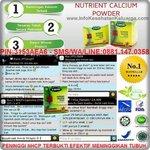 Jual Peninggi Badan Herbal http://t.co/9QmROQlQus, Info & Order PIN:3153AEA6 - SMS/WA/LINE: 08811470358 http://t.co/iZNjNUvxzX #Bogor