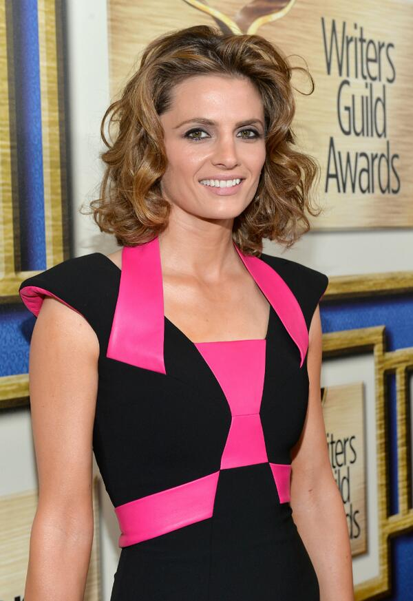 @Castle_ABC co-star @Stana_Katic on red carpet at 2014 #WritersGuildAwards @WGAWest L.A. ceremony c: @GettyImages http://t.co/8q2M0RtimP
