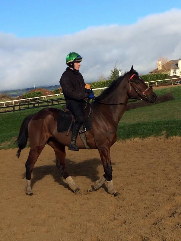 http://t.co/KCSeltAtx2 Fly looks in superb nick with Paul Townend on board
