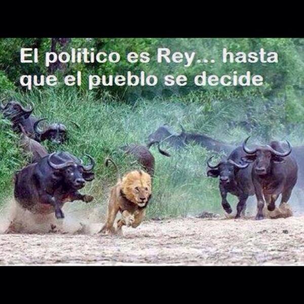 Venezuela pa'lante! Estoy con ustedes!!! http://t.co/TDQCkiWTtR