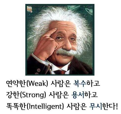 연약한 사람은 복수하고 강한 사람은 용서하고 똑똑한 사람은 무시한다. http://t.co/thmWY23rE0