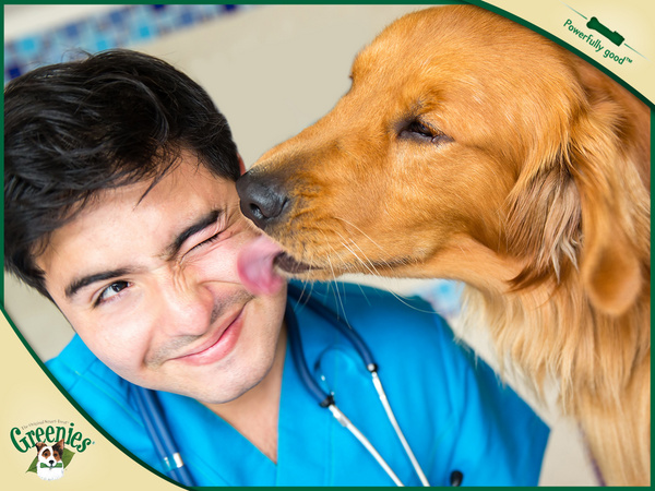 February is National Pet Dental Health Month. Until his next checkup, let GREENIES® treats give him fresh breath. http://t.co/LHAf43L3OC