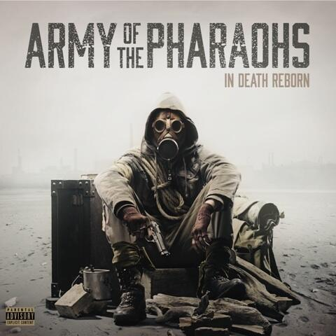 Army of the Pharaohs - In Death Reborn 4.22.14 http://t.co/F6IHDA9dG7