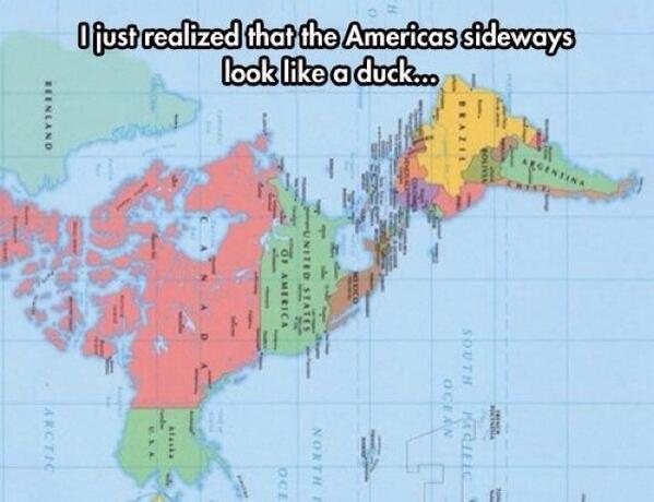 Ya vieron que América de lado es un pato? http://t.co/Uv0fyybbkw