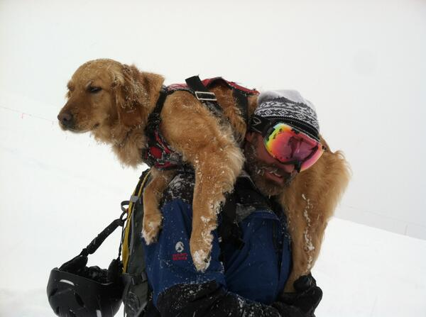 Tonight on @Nightline: we go into the Colorado Rockies with the men, women & dogs saving lives after an avalanche. http://t.co/b30NOyUh05