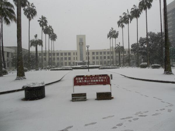 今日14日、市大に来ていないみなさん。 見れなかった市大の雪景色です。 http://t.co/Jm7W6ClJ3H