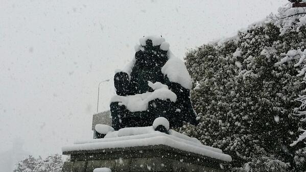 甲府は観測史上最高の積雪だったゅこーん!転ばんように気をつけてくんりょ!(^з^) http://t.co/YuRLlawT6J http://t.co/gZoyExhC0s