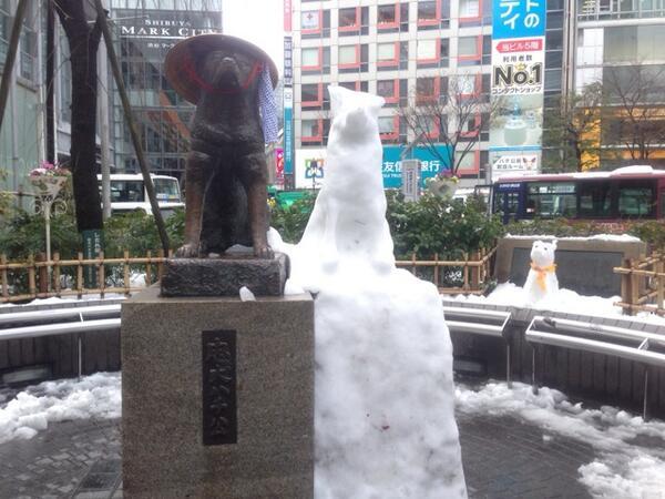 そして渋谷のハチ公拝みに(笑) 3匹になってたw 奥は… お父さん!? http://t.co/oCb5jldMpW