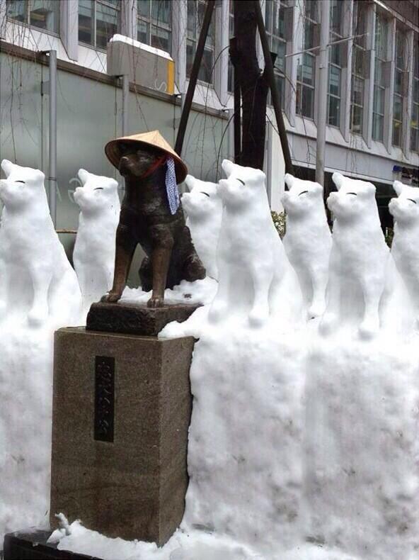 なんだこれは!笑 RT @poko_suki: 渋谷駅のハチ公が昨日より増えてるww http://t.co/g7e4zHlIOC