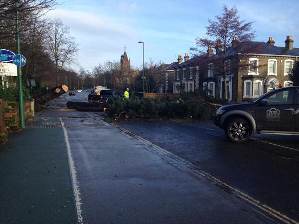 Team is at the scene clearing the tree on the Avenue. #Southampton http://t.co/iRAc21uDC3