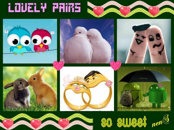 """""""Lovely Pairs"""" by Lorna  piZap #photo #collage on #iPhone & #iPad -► http://t.co/MM6tZWsmMe http://t.co/PWhdAa4yZX"""