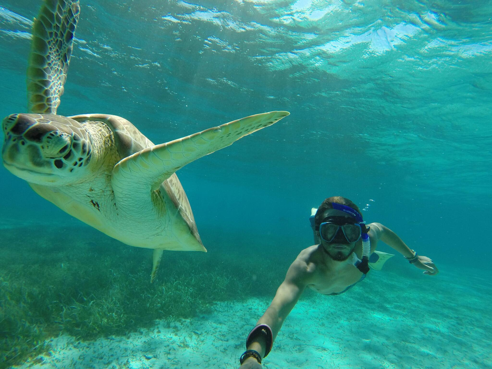 GoPro user Lane Adams snorkeling the Hol Chan Marine Reserve in Belize. http://t.co/0Bh184gDRL