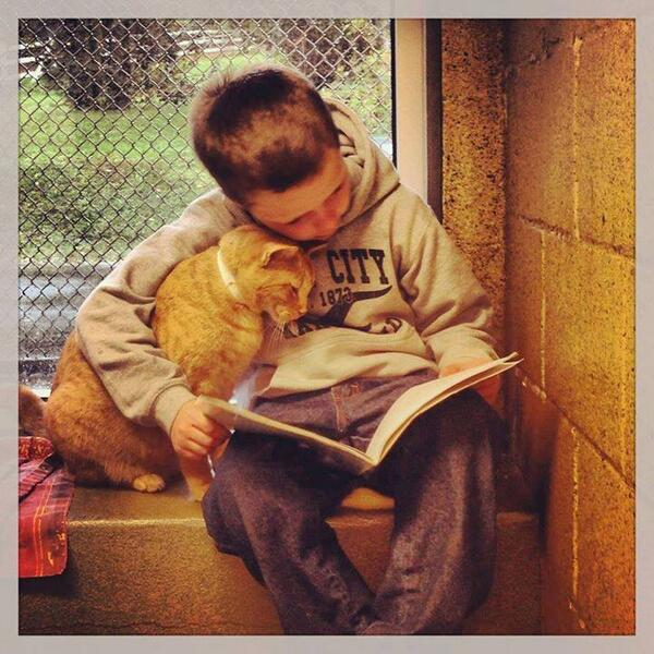 This animal rescue center has a program called Book Buddies where kids read to sheltered cats to sooth them. http://t.co/2fco96HZas