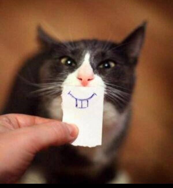 Bring a smile to any face! http://t.co/mc5BzzWjK8
