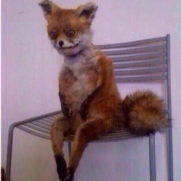 """""""@callmeWise: http://t.co/rm9YO2TCH5"""" when you waiting to use the bathroom after you been drinking"""