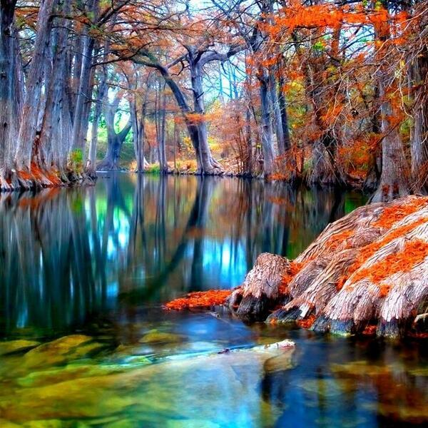 beautiful @PictureWorId: Guadalupe River, Texas http://t.co/KZVryai9YU