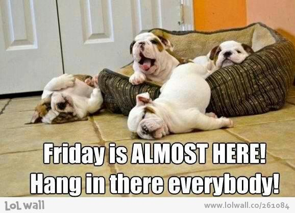 Hooray! 3 more days till the weekend! http://t.co/HjJn1KrrED