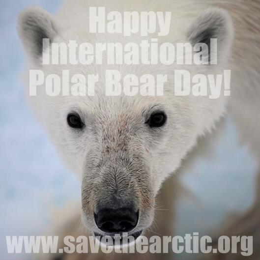 동참! RT @greenpeacekorea: 오늘은 세계 북극곰의 날입니다. http://t.co/nIRbMviYVT 에서 북극을 지키는 일에 동참해서 #북극곰 의 날을 축하해주세요!  #PolarBearDay http://t.co/zfI4g3nXWF