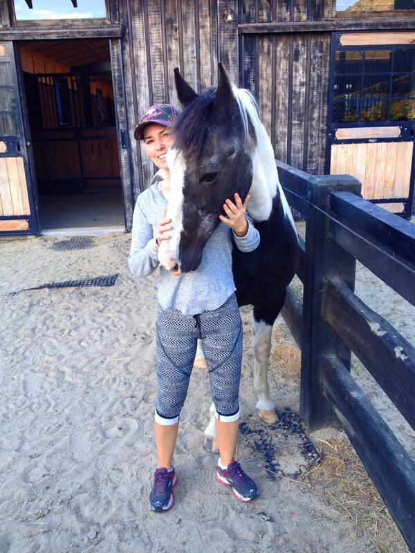 Oh my sweet, old friend Tango.  Dusty here after rolling in the sand.  He likes his cuddles! #horses http://t.co/uVfrq3zXPU