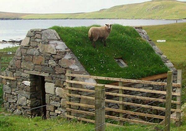 Love this.  RT @robinbrittain: RT @ecoschemes: RT @1956kemo: sheep on the roof http://t.co/MaGWF4bWej