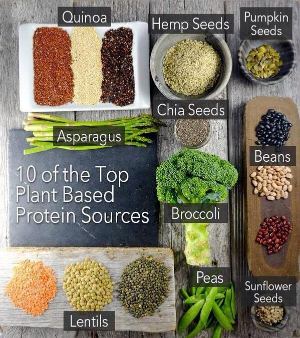Good to know...10 of the top plant based protein sources. #vegan #vegetarian http://t.co/vhinaSsoRD