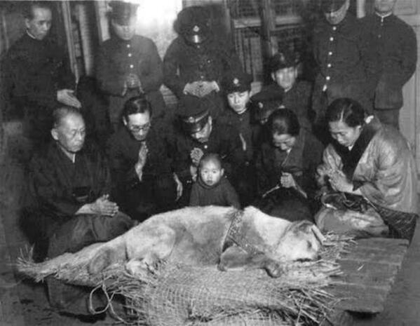 忠犬ハチ公の死後直後に亡骸を囲んで悼む人たちの写真がSNSでTom Jones から送られた数百枚の写真の中で発見。貴重な写真と思います。銅像よりも一回り大きい。 http://t.co/zHHA9xS6dS