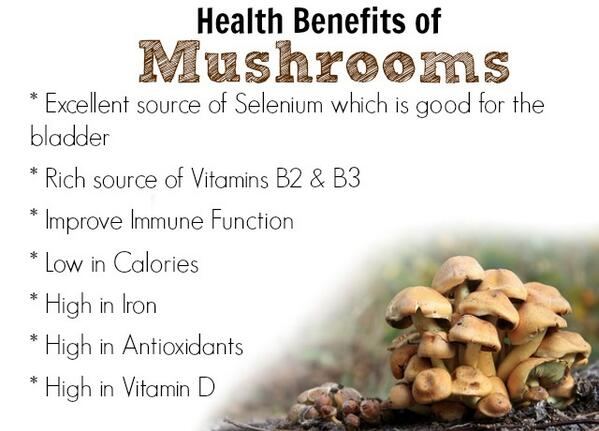 Healthy & Herbal, benefits of Mushrooms.. http://t.co/VuSWujO2oQ