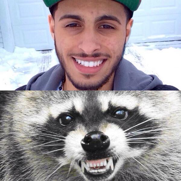 Niz (@NizzyJBeats): @MeekMill @FreeLaddin nigga look like a raccoon