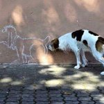 Street Art... http://t.co/AScUfBiHv1