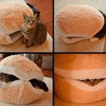 Cat becomes burger. http://t.co/slIfOA0359