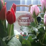 RT @WordOfMouthLife: @thewanted your fans are amazing! They gave me flowers! <3 #KCA #VoteTheWantedUK http://t.co/50m9itILh1