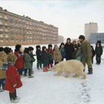 RT @russian_market: Just another school day in Russian Norilsk. Nothing special here. No, it doesnt bite. http://t.co/337q95Jw4L