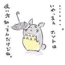 とにゃりのトトロ(・ω・)